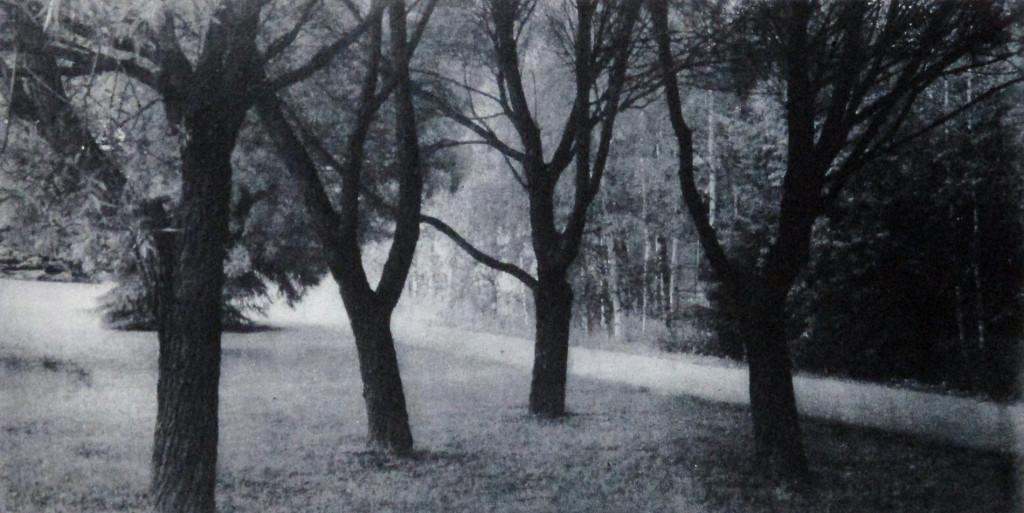 Laakso Juha, Hiljaisuuden ääni IV