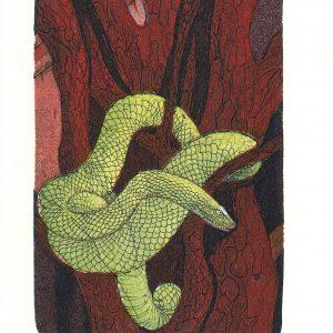 Bremer Sari, Snake