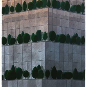 Teoskuva: Krokfors Kristian  - Reflections 2