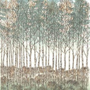 Teoskuva: Krohn Inari - Kevätkoivut