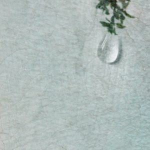 Hintsanen Päivi, Lacrimosa iaponicus II