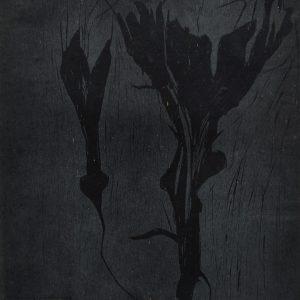 Teoskuva: Mazici Melek - Kaksi mustaa kukkaa
