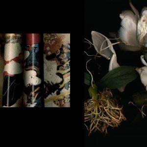 Teoskuva: Jensen Anita - the songs of the four seasons 1