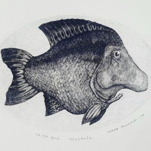 Teoskuva: Hannula Pekka - Nenäkala
