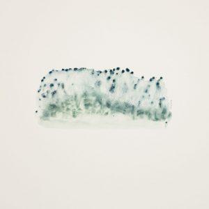 Teoskuva: Isomaa-James Merja - Blueberry Field