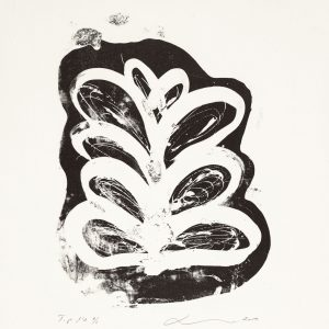 Teoskuva: Lipiäinen Leila - Havinaa III