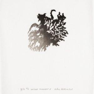 Teoskuva: Pokkinen Helena - Nature Fragment II