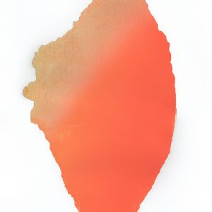 Teoskuva: Majander Sari  - Red