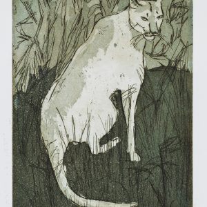 Teoskuva: Judin Susanna - Endangered Wildlife, Puuma