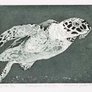 Teoskuva: Judin Susanna - Endangered Wildlife