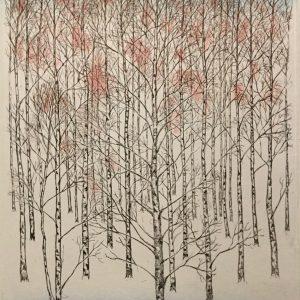 Teoskuva: Krohn Inari - Koivut