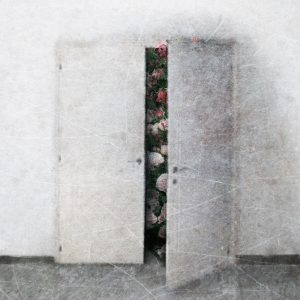 Teoskuva: Hintsanen Päivi - Salaisuus